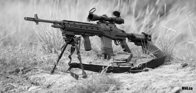 M14/M1A Blackfeather RS DMR Configuration.